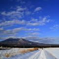 Photos: 冬の散歩道♪