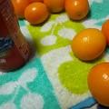 Photos: 金柑うま~ぃ? #咳予防 #金柑 #去年知らないおっさんにもらってから好きな果物