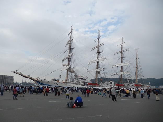 帆船日本丸セイルドリル
