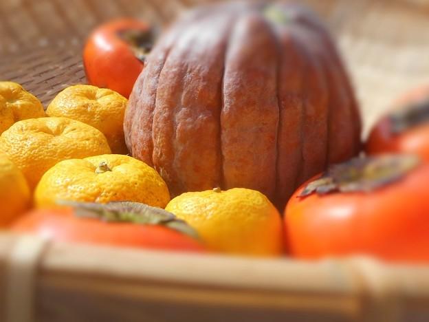 柚子の香高く 味覚の秋~かぼちゃ・富有柿・ゆず~