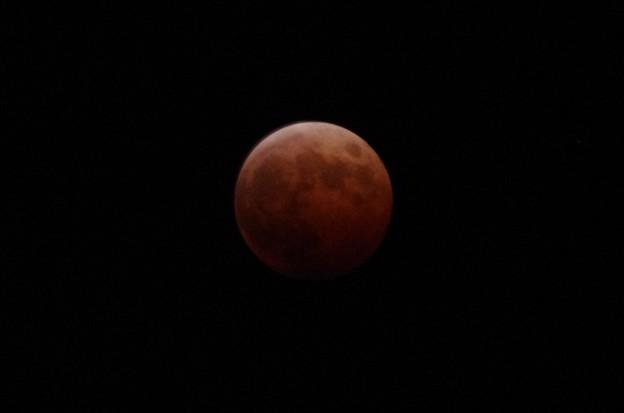 2014年10月8日の月蝕15