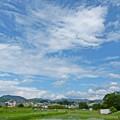 Photos: 梅雨の晴れ間(2)