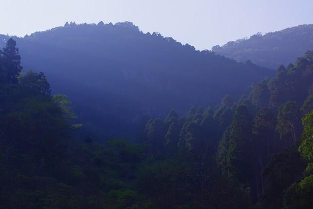 写真: 心に残る美しい風景「朝の陽光」