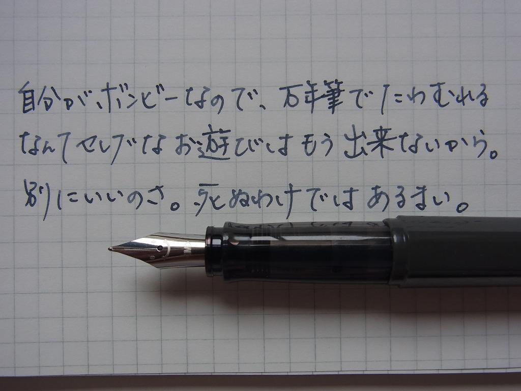 Pilot KAKUNO with Pilot fuyu-syogun scribble on GRAPHILO