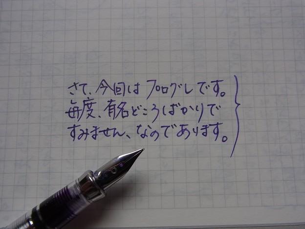 久々にエンツォのインクを使ってみた。