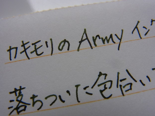 Army ink handwriting zoom