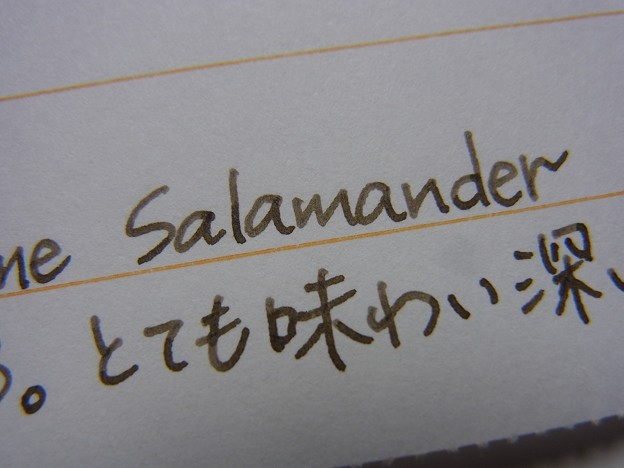 Diamine Salamander handwriting 2 (zoom)