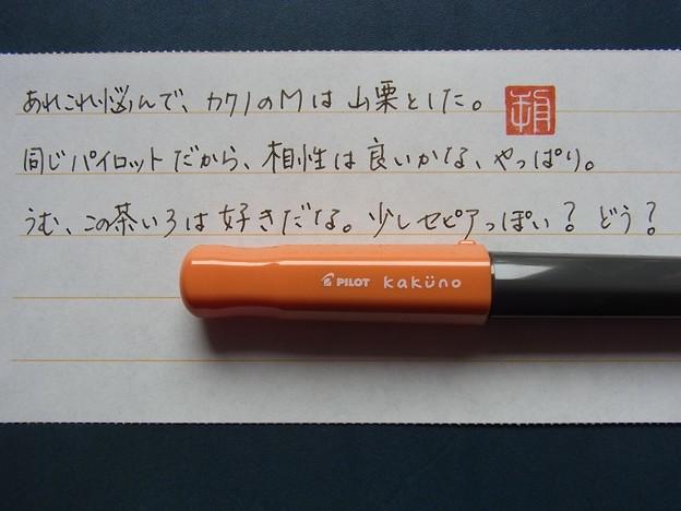 Pilot KAKUNO (M) + Pilot iroshizuku yama-guri