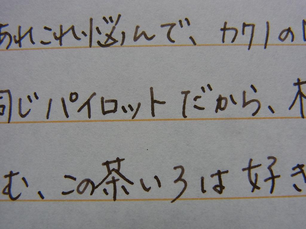 Pilot KAKUNO (M) + Pilot iroshizuku yama-guri (zoom)