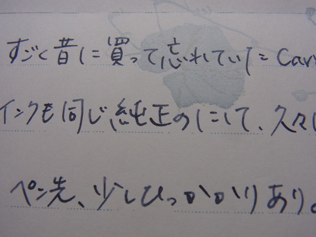 Caran d'Ache デュナスで榛原蛇腹便箋瓢箪に落書きの図 (拡大・グロ字注意)