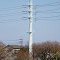 写真: 芳野台線1号鉄塔