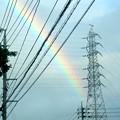 写真: 電線の向こうに