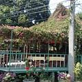 Photos: カフェですが、屋根まで花が咲いてます