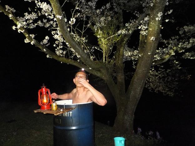 花見の露天風呂!