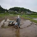 昭和56年型 手押し式耕運機