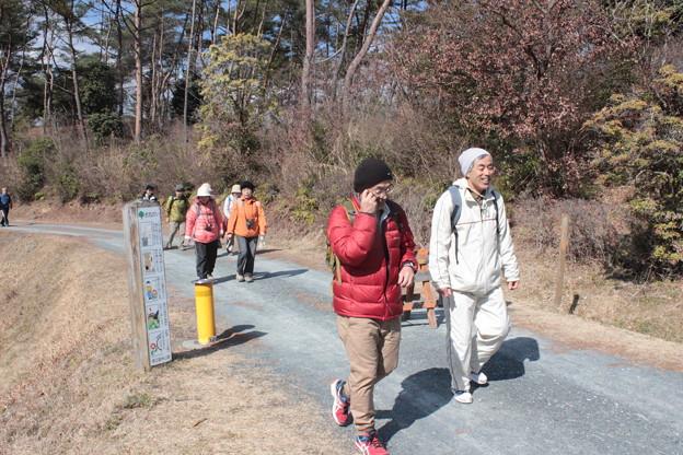 写真: 森林公園ウォーク