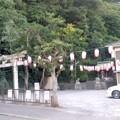 Photos: 御成諏訪神社(7月31日)