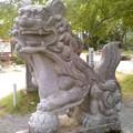 八雲神社・獅子(8月2日)