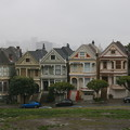 Photos: Painted Ladies (2)