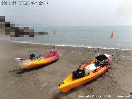 2014-07-25さば、サバ、鯖!! (5)
