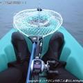 Photos: 2014-10-26お魚は何処に!? (1)