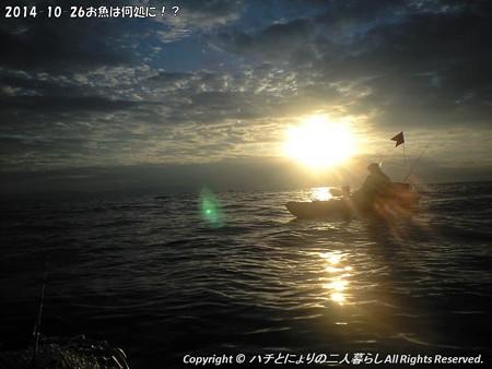 2014-10-26お魚は何処に!? (3)