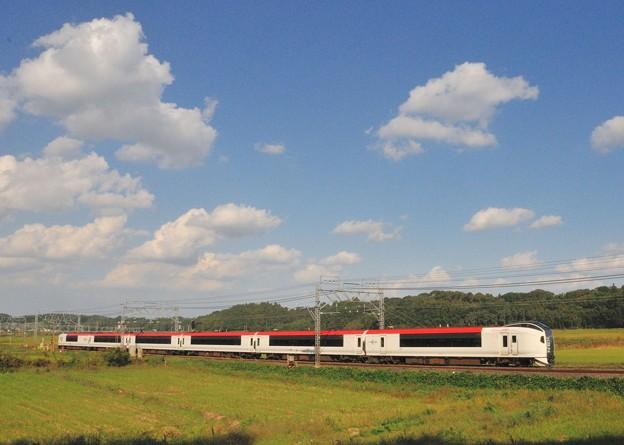 1019-MS10-E259-D3