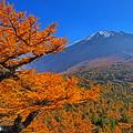富士秋景 2015