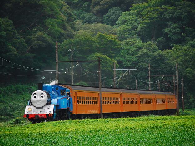 機関車トーマス@大井川鉄道