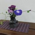 写真: 咲きました