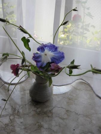 花瓶で咲く