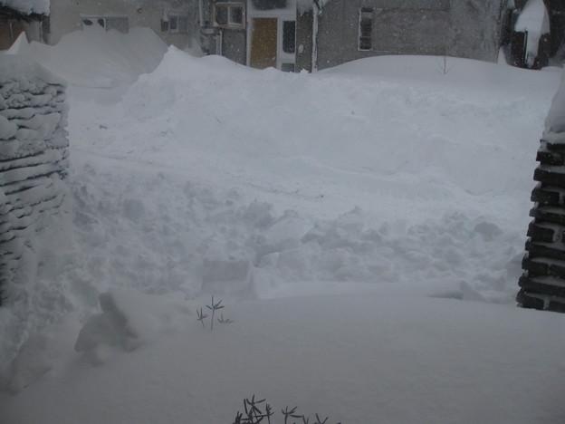 1月20日 9時前 除雪が入る