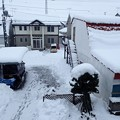 写真: 雪