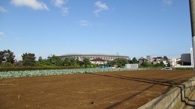 日産スタジアム(横浜市港北区小机町)