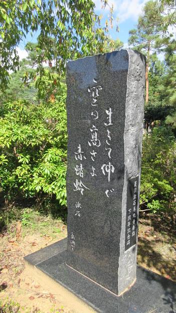 善光寺(長野市元善町)夏目漱石