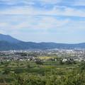 妻女山(赤坂・赤坂山。斎場山・祭場山。長野市松代町)八幡原
