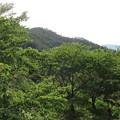 妻女山(赤坂・赤坂山。斎場山・祭場山。長野市松代町)斎場山