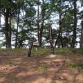 妻女山(赤坂・赤坂山。斎場山・祭場山。長野市松代町)上杉謙信本陣跡