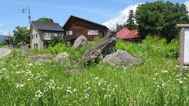 15.06.10.小菅神社(飯山市)一の鳥居跡