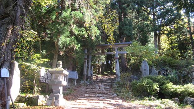 15.10.26.小菅神社(飯山市)奥社鳥居
