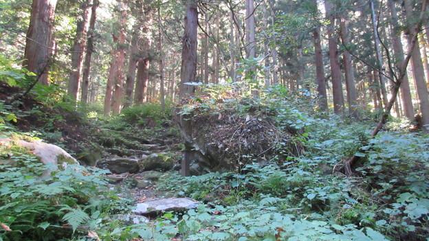 15.10.26.小菅神社(飯山市)隠石