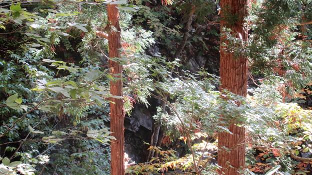 15.10.26.小菅神社(飯山市)不動岩