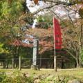Photos: 上田城(上田市営 上田城址公園)本丸跡