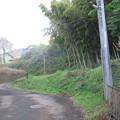小田原古城 久野口(神奈川県)