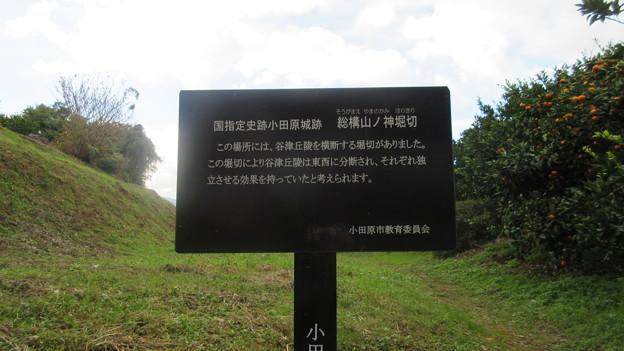 小田原古城 山ノ神堀切・荻窪口(神奈川県)