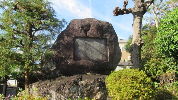 小田原城 対潮閣(天神下。神奈川県)