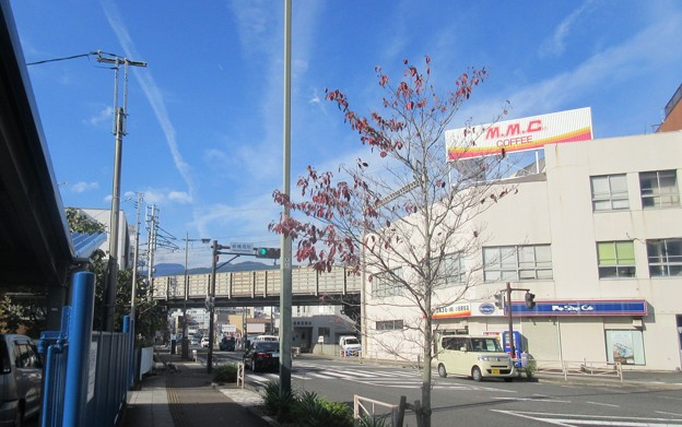 小田原古城 板橋口・上方口(神奈川県)