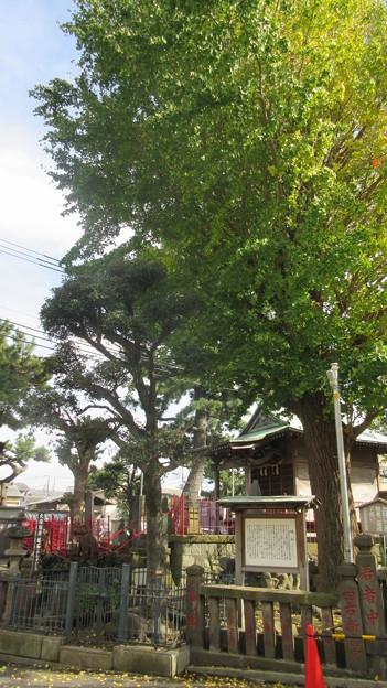 小田原古城 北條稲荷神社(蛙石明神。神奈川県)