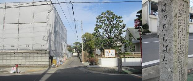 小田原城 八反畑(神奈川県)
