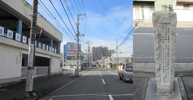 小田原城 本源寺前(神奈川県)